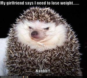 loseweight